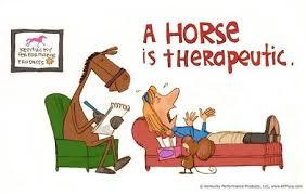 Horse therapeute
